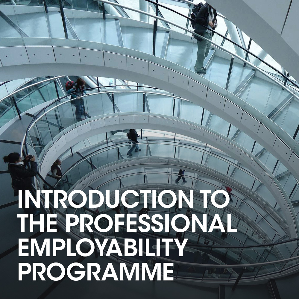 introduction-to-the-professional-employability-programme