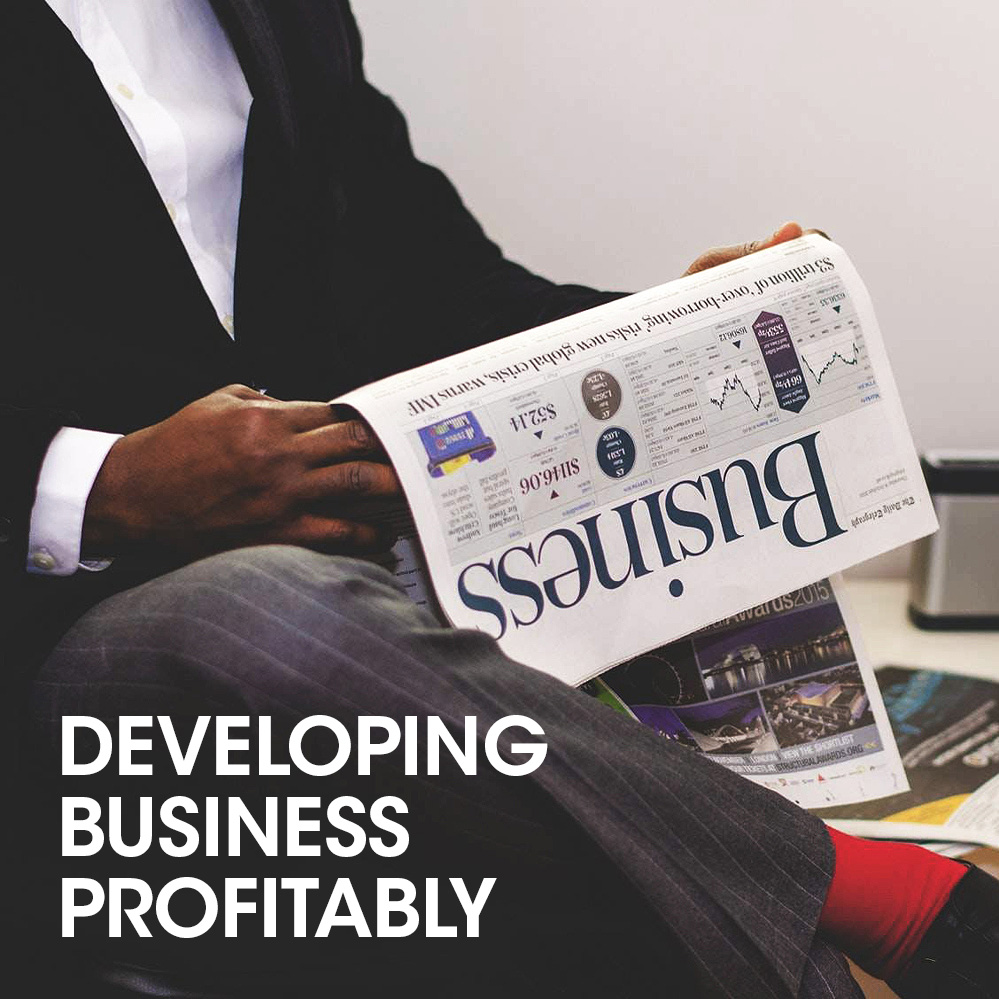 developing-business-profitability
